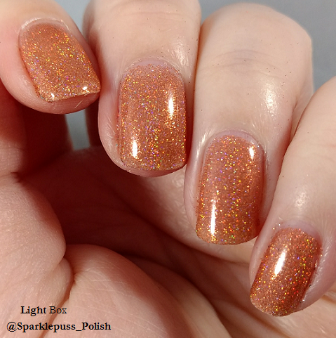Pumpkin Spice by Pretty Scary Cosmetics 3