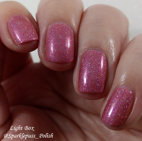 Feather Family by Literary Lacquers 1