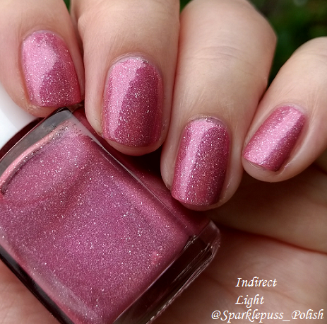 Feather Family by Literary Lacquers 2