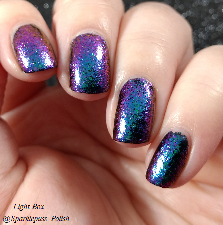 Paradox by ILNP 5