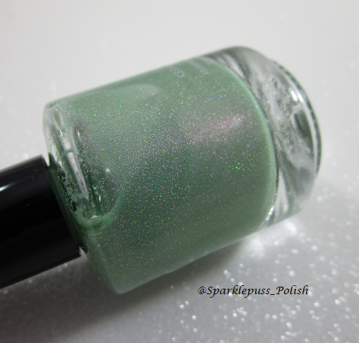KBShimmer Cactus If You Can