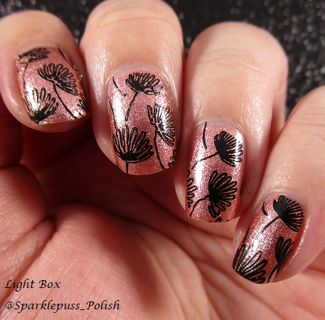 Beauty Bigbang J2913TM 4 ILNP Sugar Coated Winstonia 403